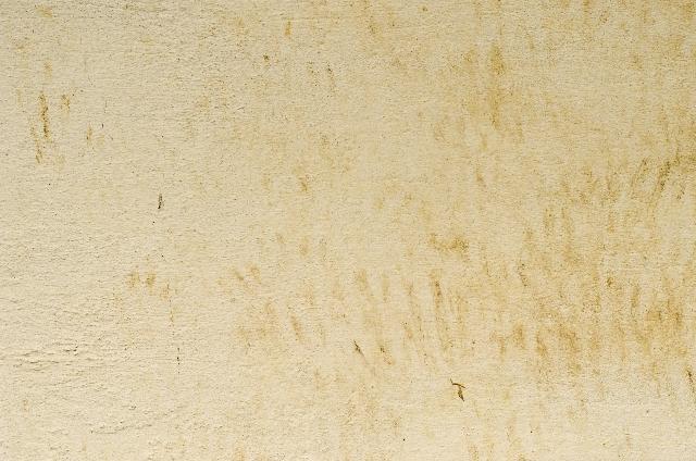 外壁塗装の防汚塗装